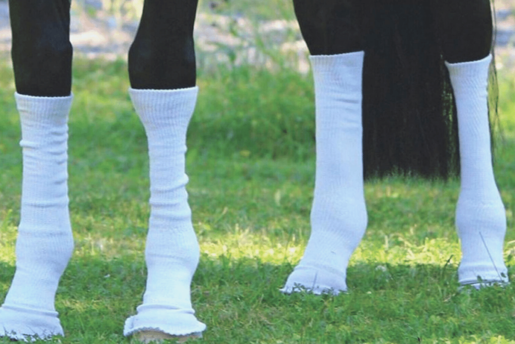 sox-for-horses