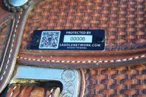 Saddle Network: Effective, Proactive Saddle Theft Prevention
