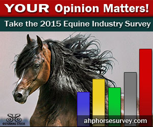 2015-Horse-Survey-Ad-300x250