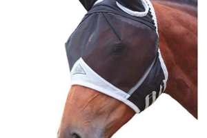 10 Things We Recommend for 2020 – #4 & 5 Fly Masks from Shires & Professional Choice