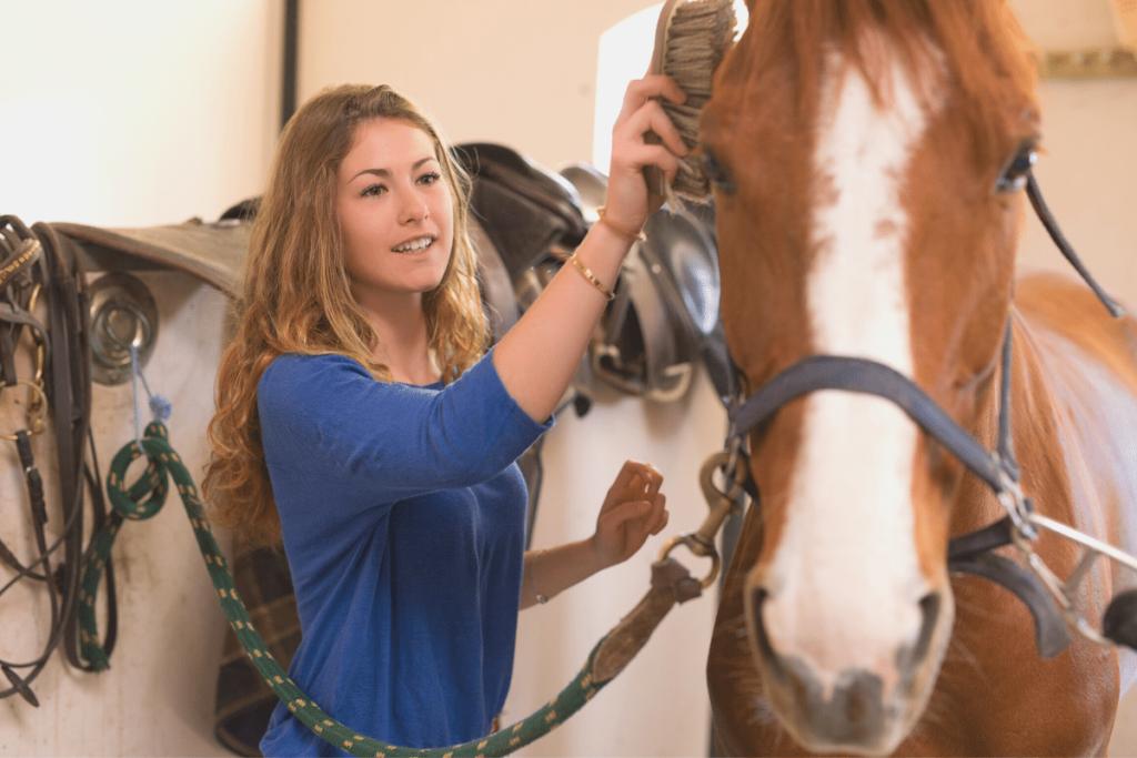 first-horse-essentials